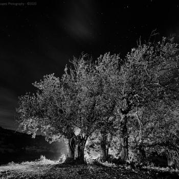 BANCALES_MORALET-675-ene-01-2016-copia