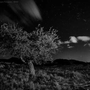 BANCALES_MORALET-681-ene-05-2016-copia