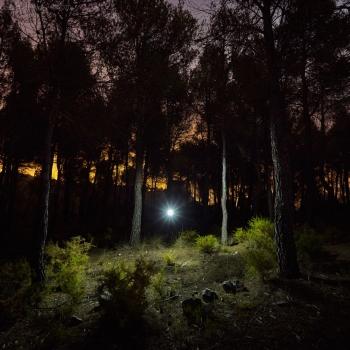 MAIGMO_FINEART-558-ago-15-2014