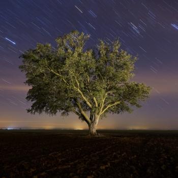 www.adv.estudiocerofotografia.es