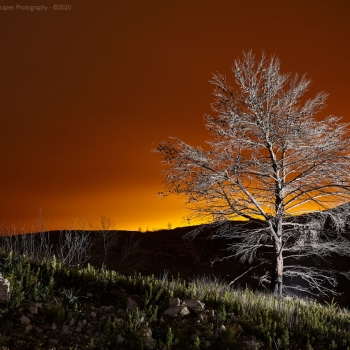 FORADADA_139-mar-24-2012
